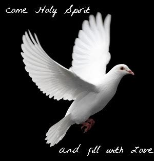 holy spirit 3 day miracle prayer prayer to the holy