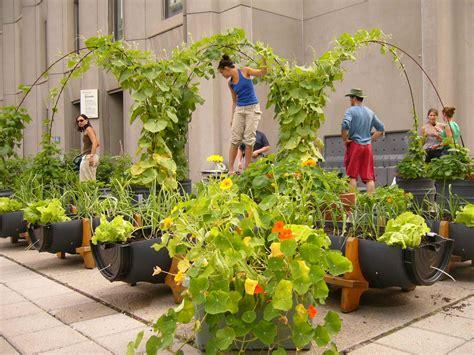 Devenez jardinier bénévole!   Les jardins sur les toits