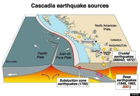 earthquake theory cascadia subduction zone tremors could foretell larger