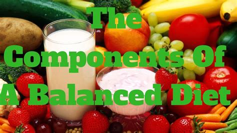 the components of a balanced diet youtube