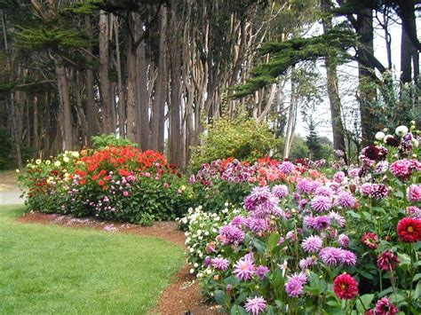 mendocino botanical garden pin by marilyn fellows on places i ve been