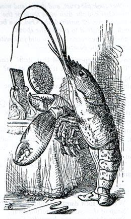 the voice lobster hair 68 best mock turtle s story and lobster quadrille images