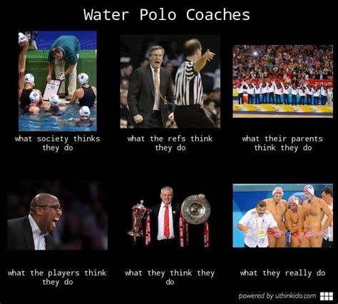 Polo Meme - 17 best images about water polo memes on pinterest water