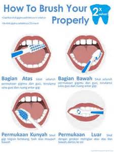 how to brush your teeth properly questions and answers