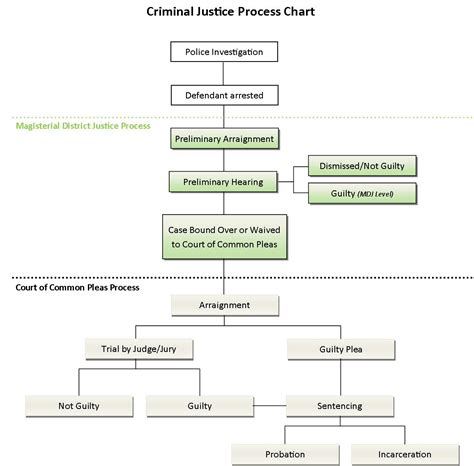 criminal flowchart procedures of a criminal