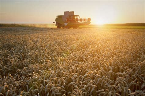 major environmental challenges 37 leading agri businesses launch alliance to boost green