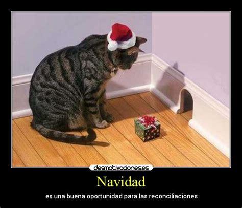 imagenes graciosas de animales en navidad navidad desmotivaciones
