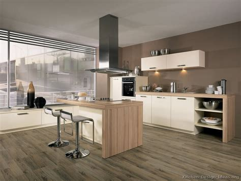 Modern Kitchen With White Cabinets Pictures Of Kitchens Modern White Kitchen Cabinets Kitchen 11