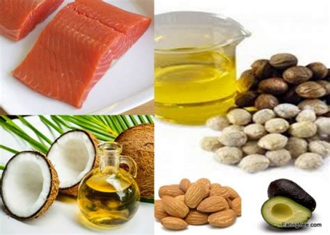 healthy fats rich foods best sources of vitamin b in food 2017 2018 best cars