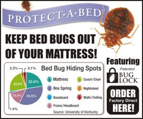 california bed bug law 17 best images about pests on pinterest essential oil