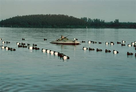 layout hunting green bay layout boats are the ultimate for waterfowling