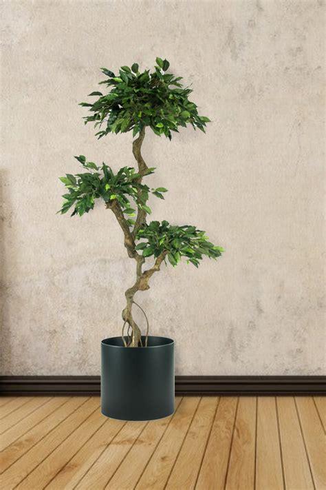 Mooie Planten Voor Binnen by Mooie Kunstbomen Voor Binnen Natuurlijk Decoratief