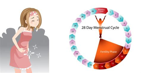 missed menstrual cycles tips to restore your menstrual cycle naturally