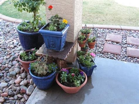 how to do container gardening 22 fabulous container garden design ideas for beautiful