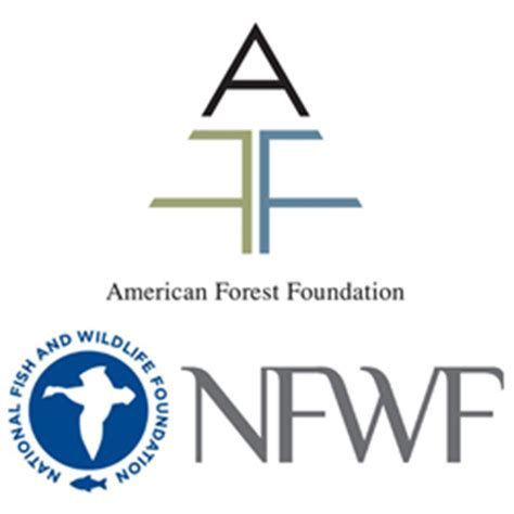 american forest foundation and national fish and wildlife