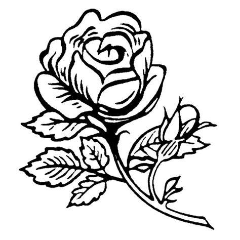 single rose coloring page single rose clip art cliparts co