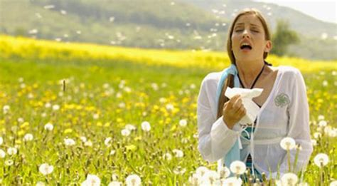 has allergies tips for who allergies human n health