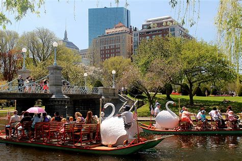 swan boats opening day 2018 five reasons to leave the house this weekend boston magazine