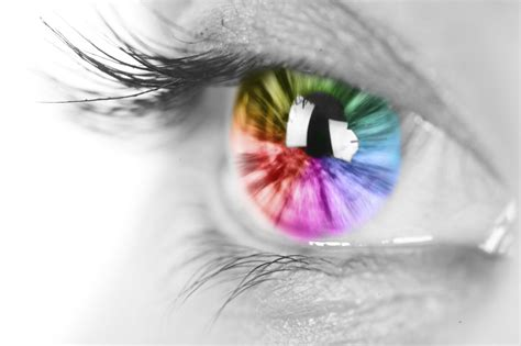 the colors through the eyes a color blind person 12 pics understanding colorblindness 1 800 contacts