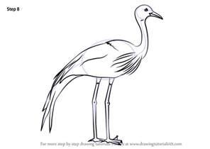 learn draw blue crane birds step step drawing tutorials