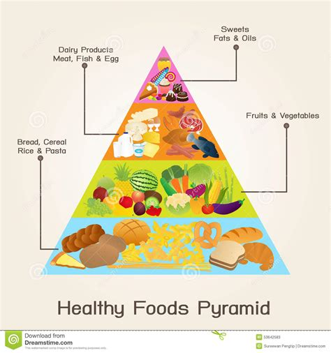 better food pyramid healthy foods pyramid stock vector image of bread food