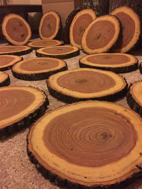 sale 10 wood slices wood centerpieces wood