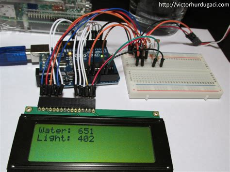 Soil Moisture Sensor Arduino Raspberry Pi plant soil moisture and light monitor victor hurdugaci