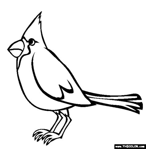 cardinal coloring pages preschool online coloring pages starting with the letter c page 2