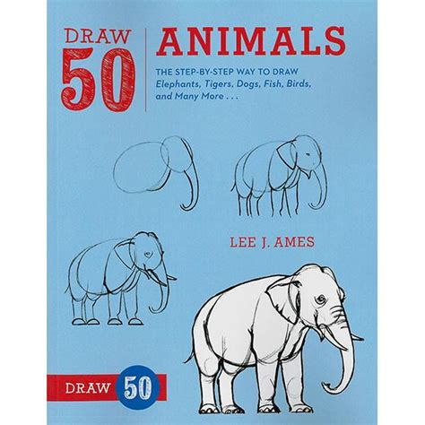 draw 50 animals the step by step way to draw elephants