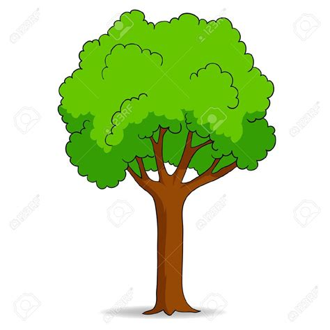 clipart alberi deciduous trees clipart clipground