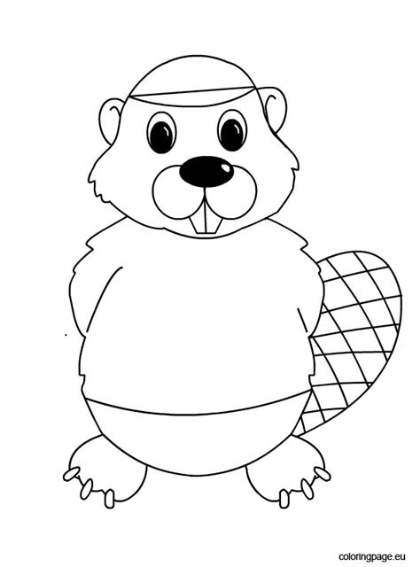 beaver coloring pages preschool beaver coloring page