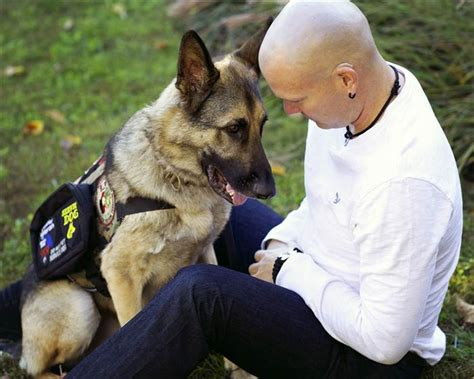 va service dogs how a service helped this veteran keep his family today