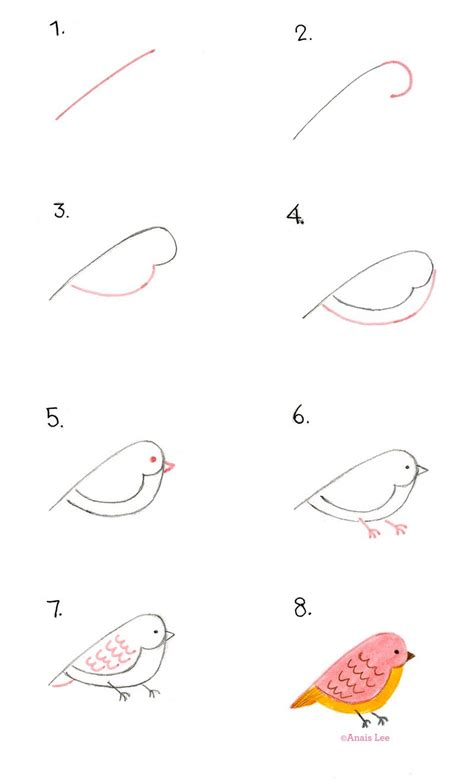 how to draw simple doodle how to draw a bird by anais lunchtime drawing 午餐的畫畫課
