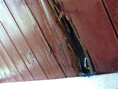 decken fã r die dachdecken mit schindeln cheap dachdecken mit schindeln