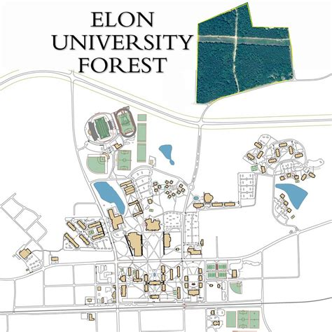 Elon Mba 2017 Calendar by Elon Elon Forest About The Forest