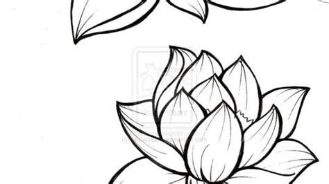 outline drawing of flowers 25 best ideas about flower