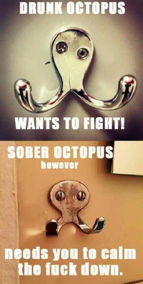 Octopus Meme - drunk octopus vs sober octopus funny pictures quotes