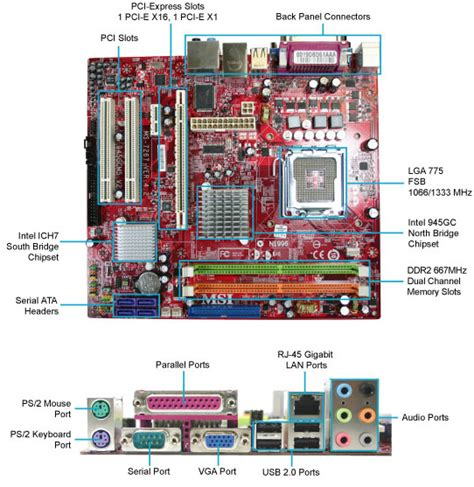 Motherboard Cardex Cdx Intel H81 hp nr146 motherboard manual pdf