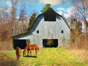 Ranch Houses Plans horses call this old barn home photograph by sandi oreilly