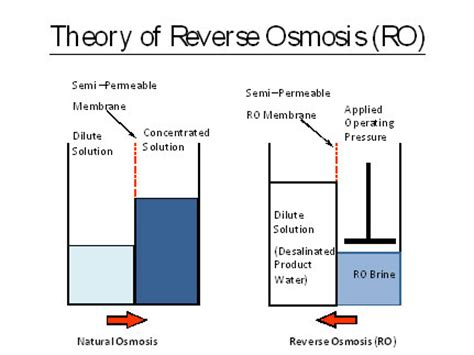 plant layout theory ionics freshwater services