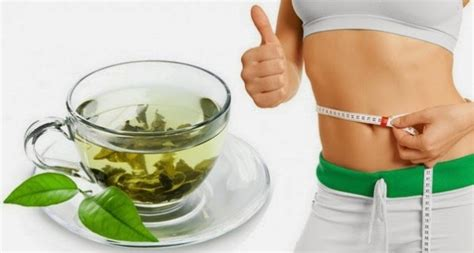 1 weight loss tea healthy happy can green tea help with weight loss
