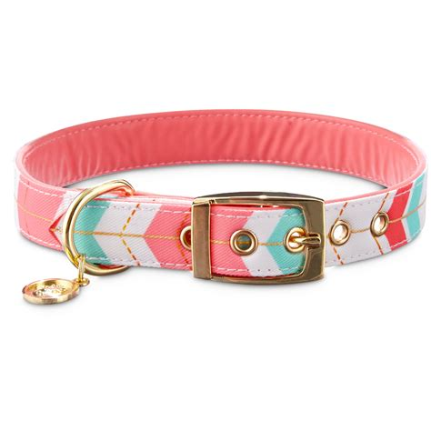 puppy collars bond co gold chevron collar petco