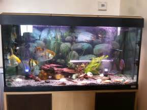 200L Tropical Fish Tank   Fishes   Southend On Sea, Essex   Pets4Homes