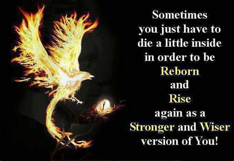 phoenix bird i will rise out of the ashes