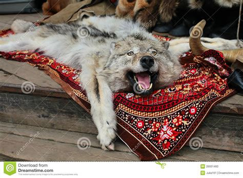 Karpet Max Ruse wolf skin rug in russian market stock image image 26931483