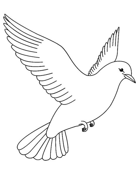 bird pictures to color printable coloring page cardinal bird coloring pages