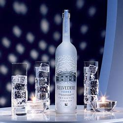 top 10 vodka drinks what are the best tasting vodkas in the world bestvodka net vodka reviews recipes