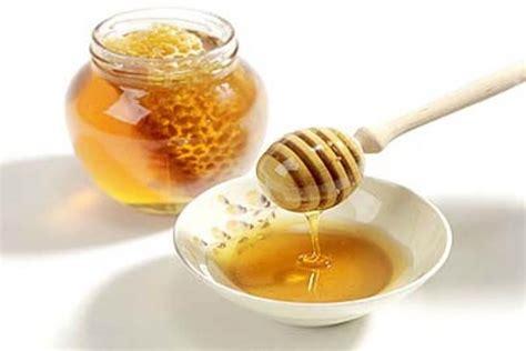 Hiu Madu Ibu Untuk Nutrisi Ibu Dan Janin khasiat madu untuk ibu dan janin