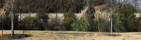 Landscape Rock Tx Rock Tx Commercial Landscaping Lawn Care