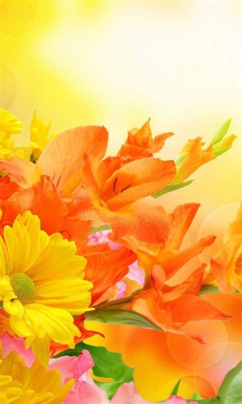 yellow  orange flowers  wallpaper
